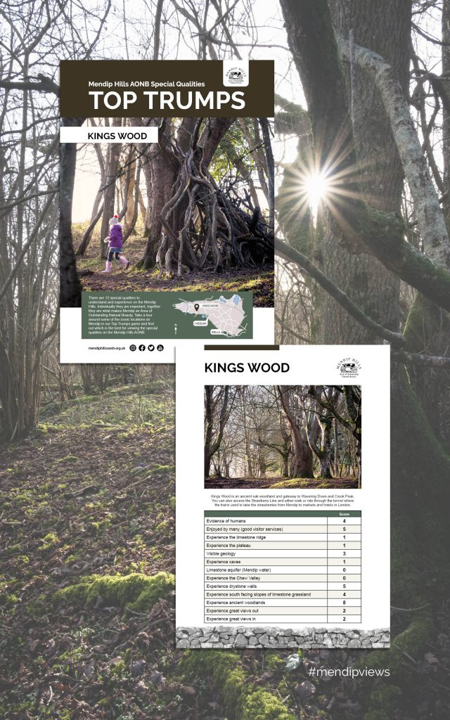 Documentary Photography of Kings Woods on some Mendip Hills Top Trumps Cards