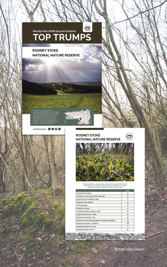 Documentary Photography of Rodney Stoke Nature Reserve on some Mendip Hills Top Trumps Cards