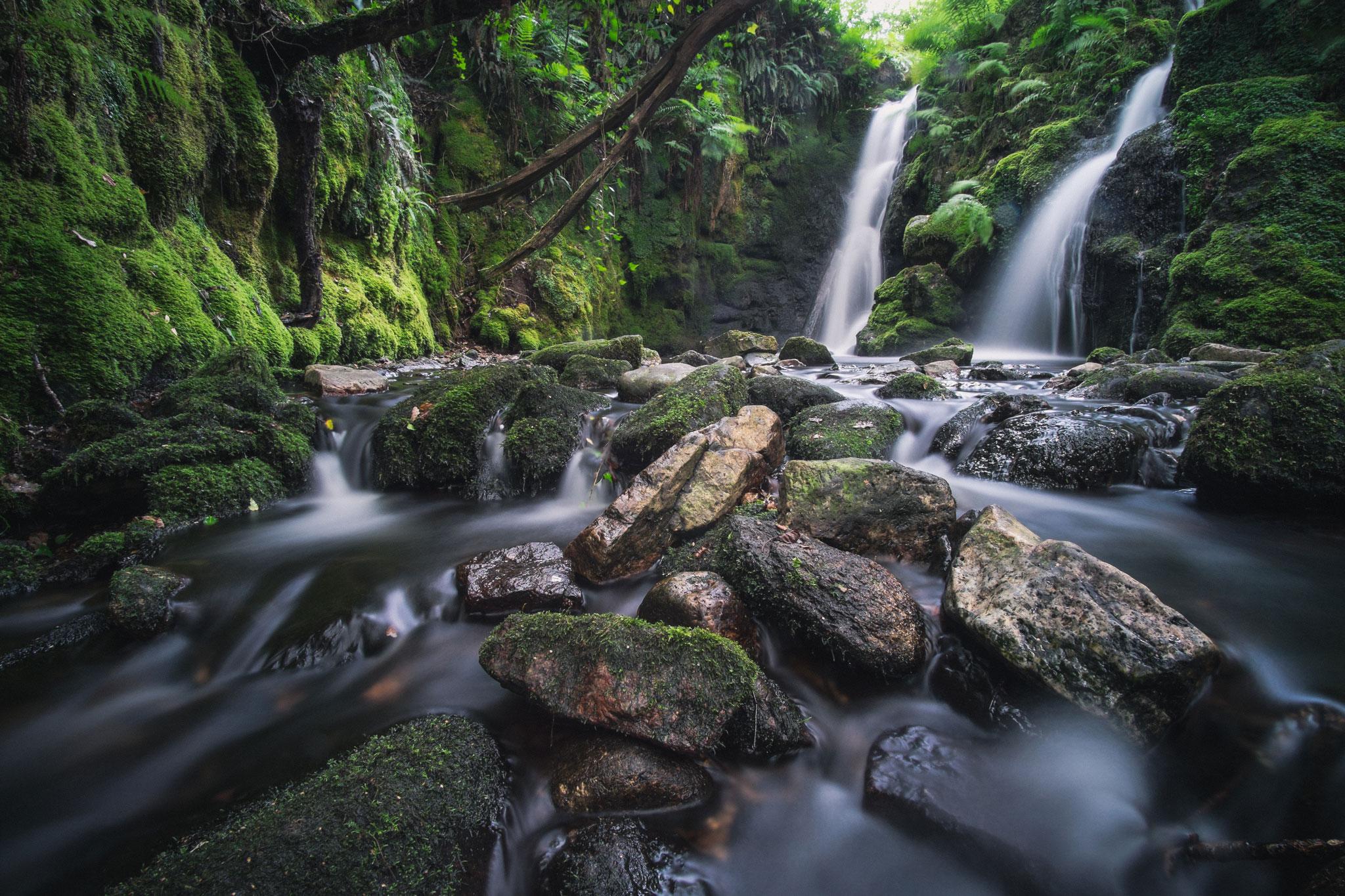Venford Brook Dartmoor
